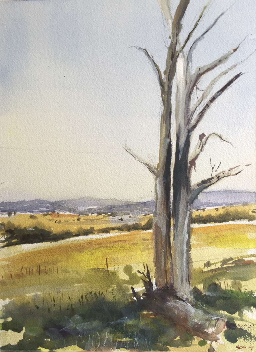 high country, central victoria watercolour painting geoff stanistreet