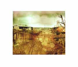 nuances: koekenaap limited edition print janet botes