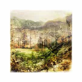 nuances: swellendam marloth limited edition print janet botes