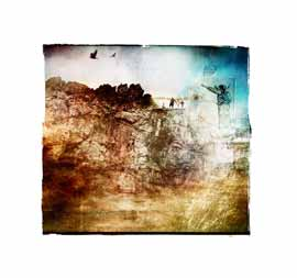 nuances: fly home limited edition print janet botes