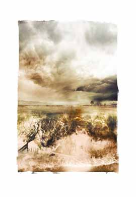 nuances:  in every drop of water lies the history of the world limited edition print janet botes