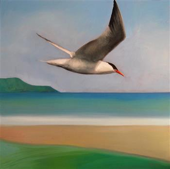 flyby of the tern painting trevor salisbury